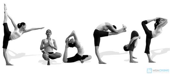 Khóa học Zumba Fitness & Yoga tại V - Club - 5