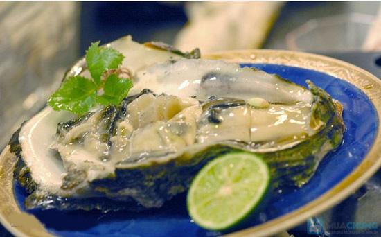 Buffet Oyster & Sushi trưa tại Khaisilk – Tajmasago Castle - Chỉ 299.000đ - 2