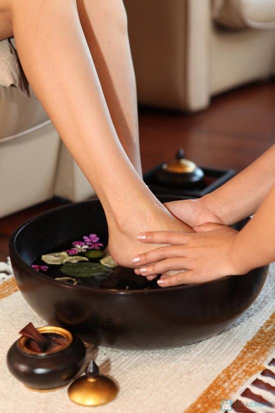 Khóa học chuyên đề dạy massage chân trị liệu tại Amor Spa - 6