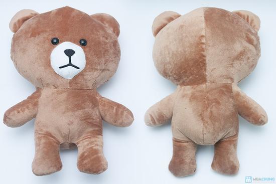 Thỏ cony và gấu brown - 4