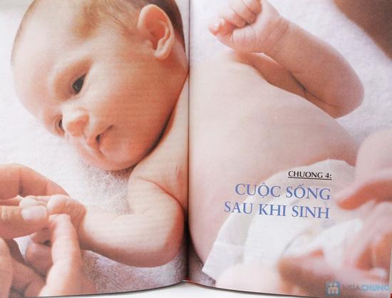 Cẩm nang mang thai toàn tập + Thai giáo. Chỉ với 162.000đ - 8
