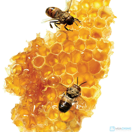 Combo 3 chai mật ong - 5