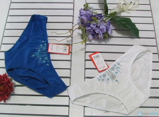 Combo 6 quần lót thương hiệu Selina-Paltal - 3