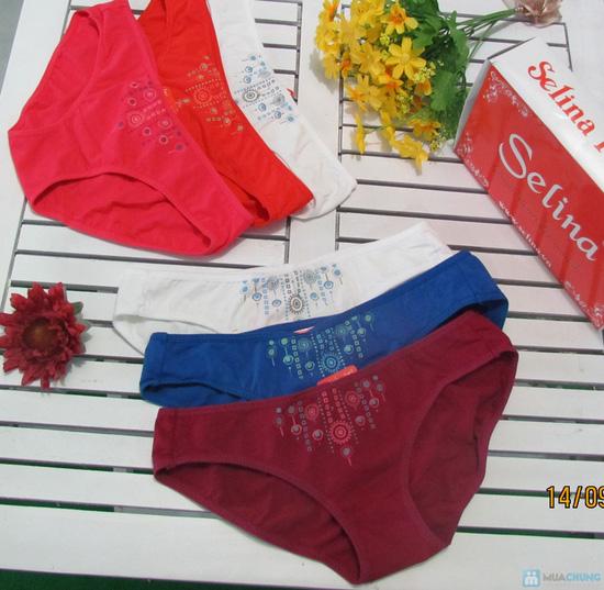Combo 6 quần lót thương hiệu Selina-Paltal - 1