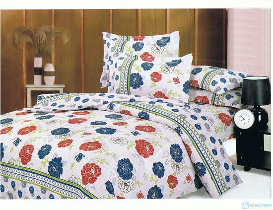 Drap cotton kiểu dáng Hàn Quốc (1 drap + 2 vỏ gối nằm + 1 vỏ gối ôm) - 5