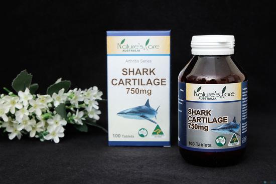 Sụn cá mập Nature's Care - 1