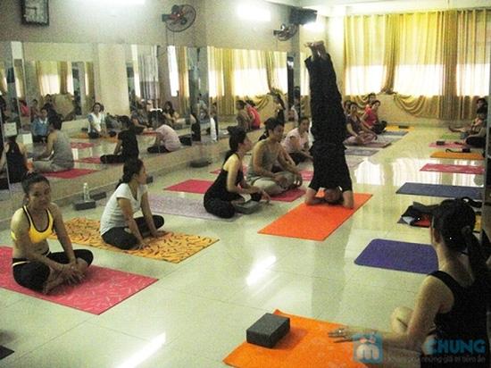 Khóa học Yoga 12 buổi tại CLB Dáng Xinh - 6