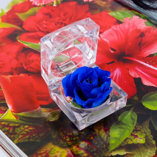 Hộp pha lê hoa hồng xanh vĩnh cửu