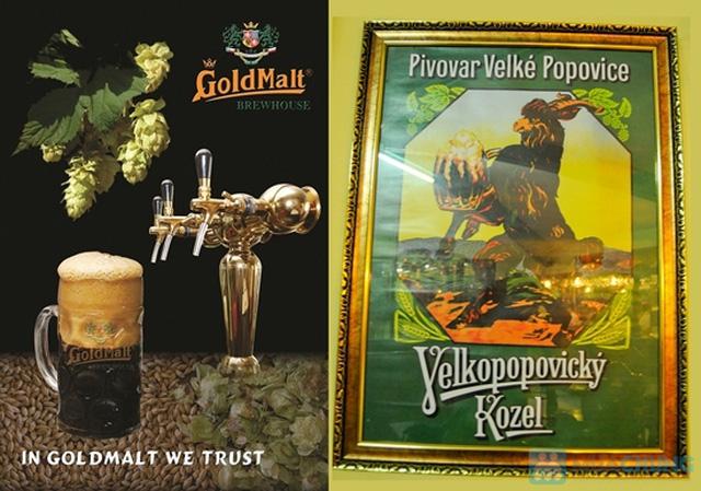 Lẩu cháo chim câu tại Nhà hàng Gold Malt Beer Việt Tiệp - Chỉ 280.000đ - 2