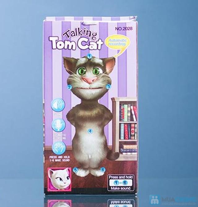 Mèo Tom biết nói - Chỉ 110.000đ - 7