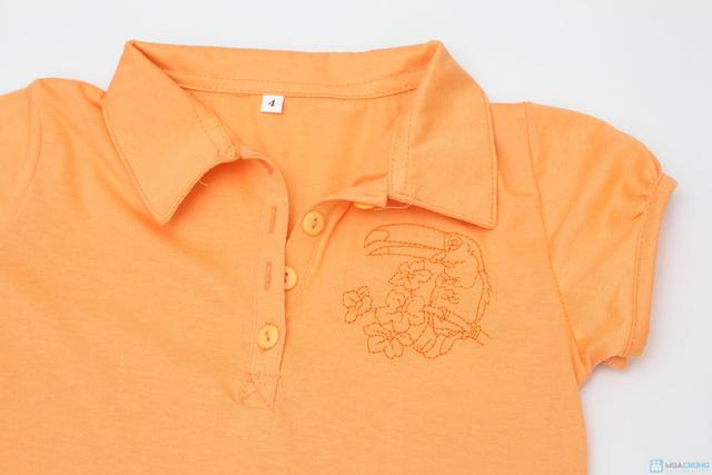 Combo 2 áo cotton cổ bẻ cho bé từ 3 đến 6 tuổi - 3