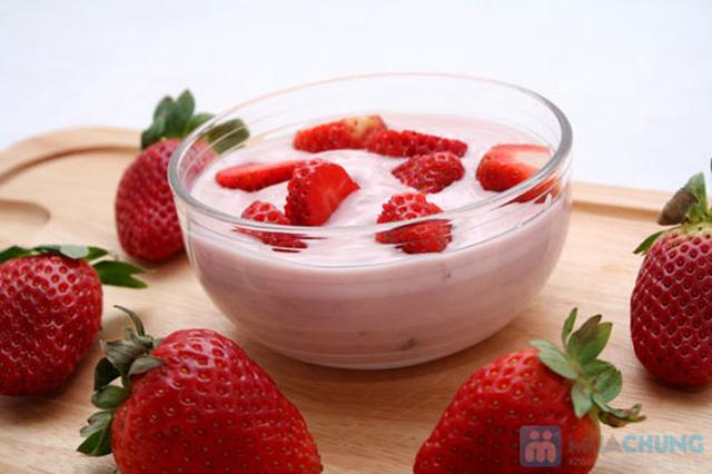 Máy làm sữa chua Misushita 6 cốc - 3