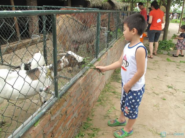 Vé vui chơi tại trang trại thiên nhiên Erahouse - 29