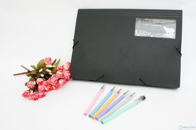 Combo Cặp tài liệu FolderMate+Bộ 6 bút ILU Pen Art - 2