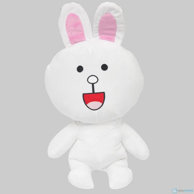 Thỏ cony và gấu brown - 8