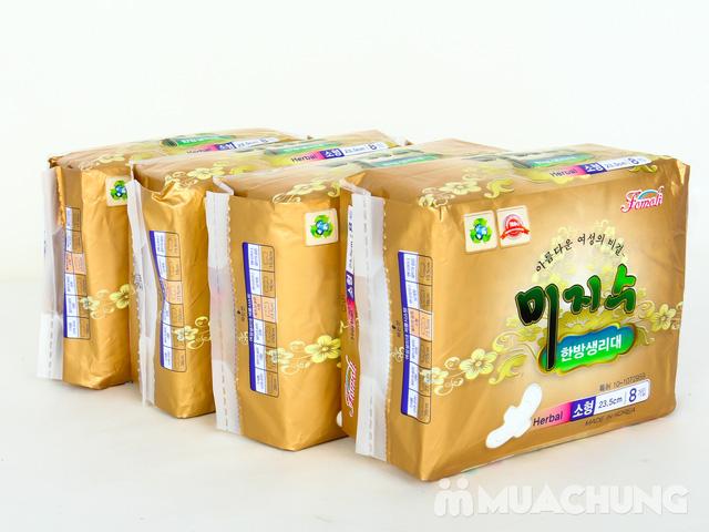 4 Băng vệ sinh thảo dược HQ - 2