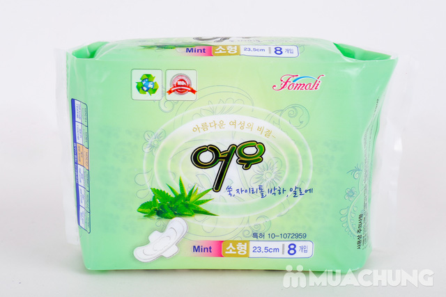 4 Băng vệ sinh thảo dược HQ - 1