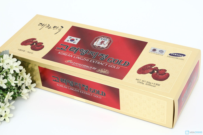 Dịch chiết cao linh chi Gold 250gr - 2