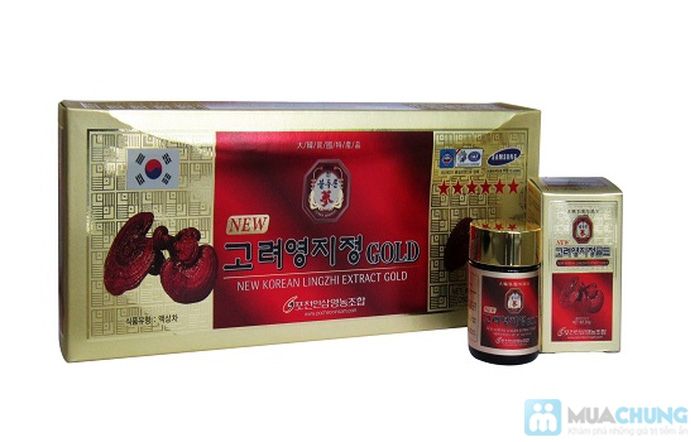 Dịch chiết cao linh chi Gold 250gr - 1