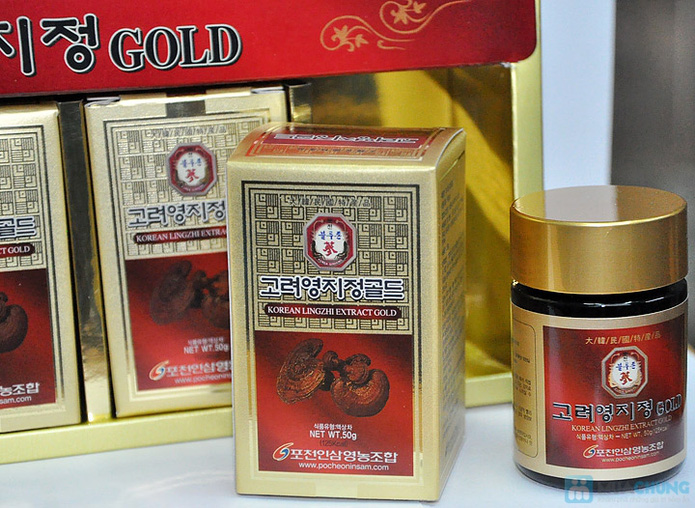 Dịch chiết cao linh chi Gold 250gr - 4
