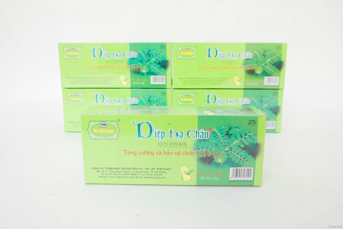 6 hộp trà Diệp Hạ Châu dạng túi lọc bảo vệ chức năng gan - 2