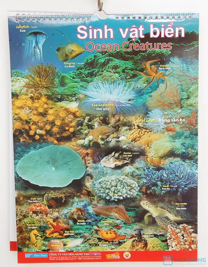 3 bộ Poster treo tường 8 tờ dành cho bé học. Chỉ với 121.000đ - 9