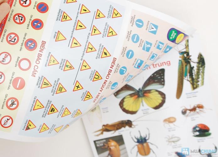 3 bộ Poster treo tường 8 tờ dành cho bé học. Chỉ với 121.000đ - 6
