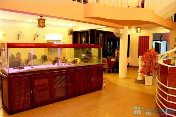 Set ăn chả cá lã vọng dành cho 2 người tại Nhà hàng Đà Nẵng Phố - 5