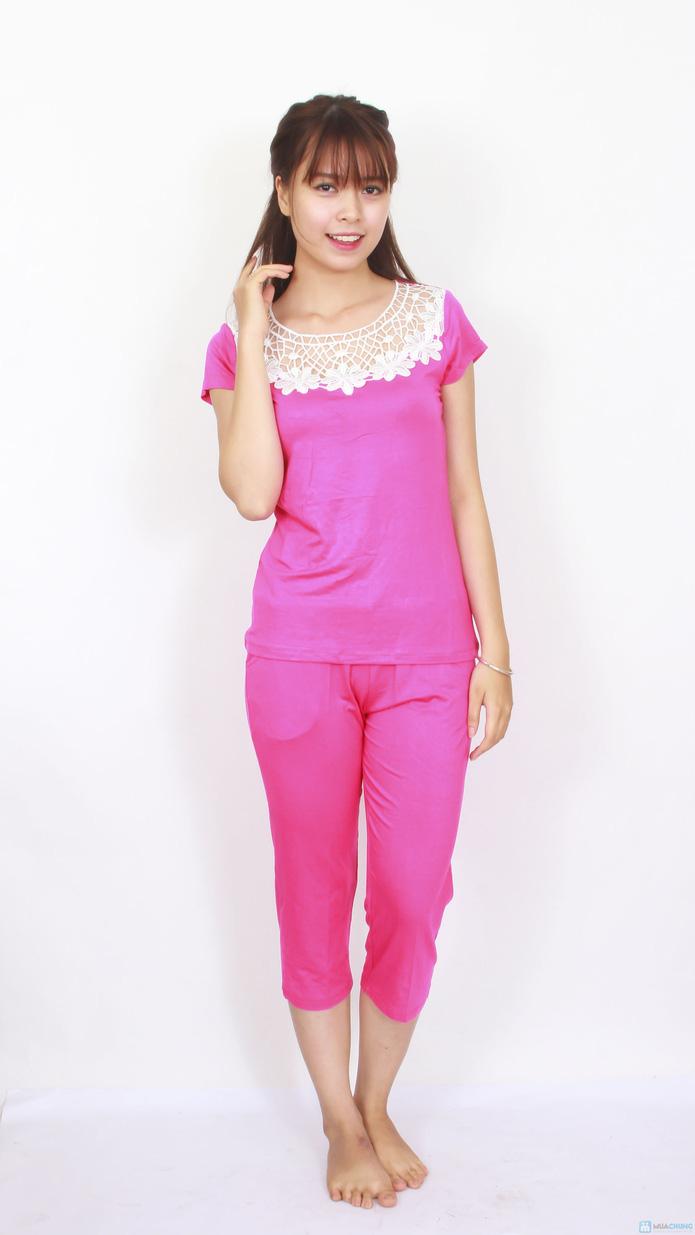 Bộ quần áo phối cổ ren điệu đà - deal Thời trang Nữ giảm 37 ...