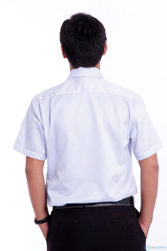 Áo sơ mi nam cao cấp xuất khẩu Michio tay ngắn sọc xanh trắng - 8