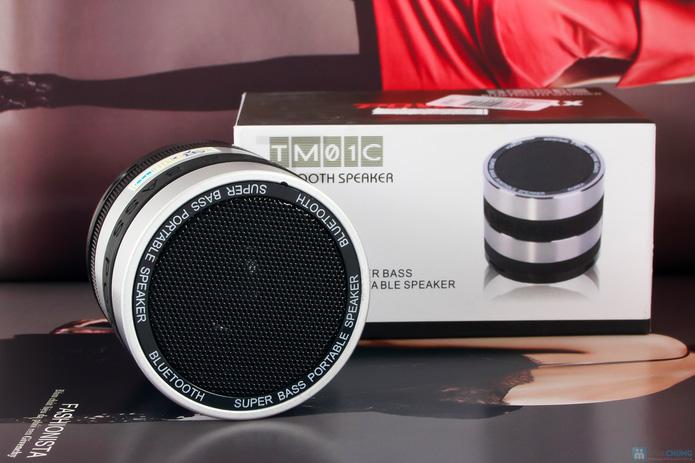 LOA BLUETOOTH POWERMAX TM01C - 1