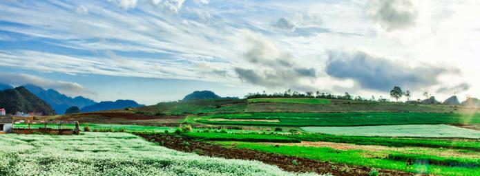 Khám phá hương sắc núi rừng Thung Nai - Mộc Châu mùa mơ và mận   (2 ngày 1 đêm) - 5