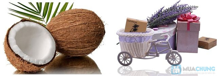 3 bánh xà bông dầu dừa handmade - 3