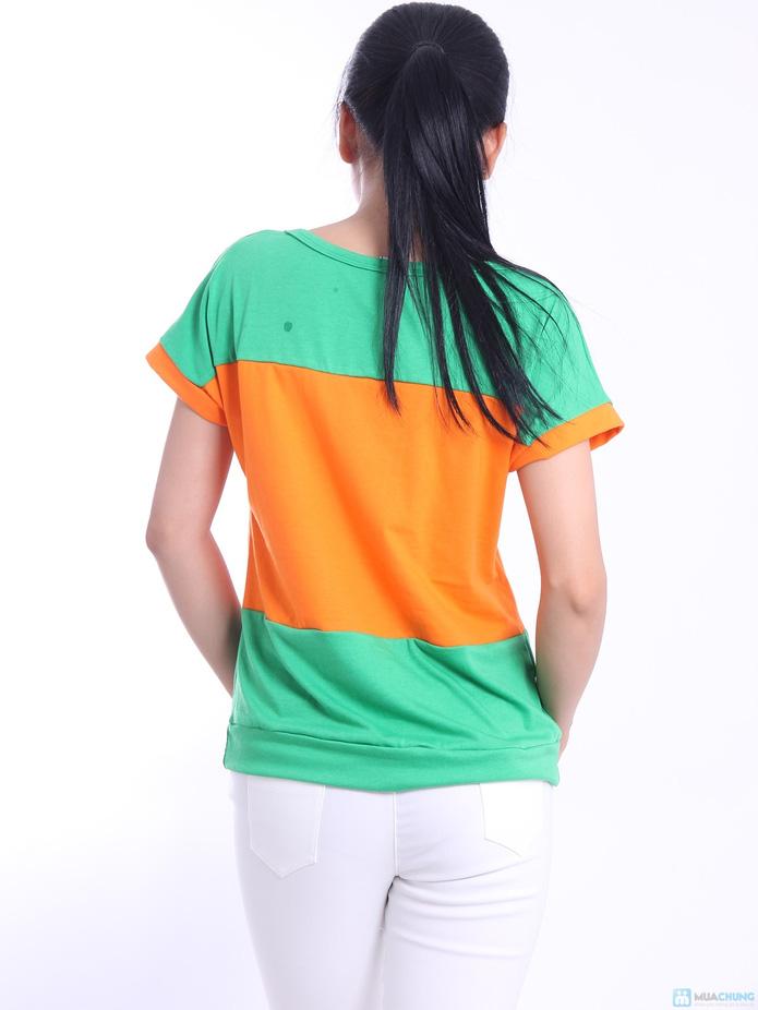 Áo phối 3 màu phong cách Hàn Quốc - 9
