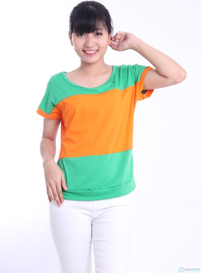 Áo phối 3 màu phong cách Hàn Quốc - 8