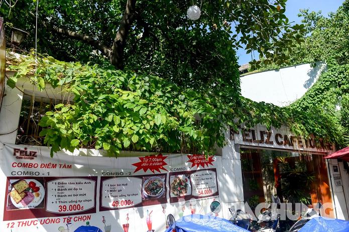 Pizza Hawaii + gà đúc lò / mì Ý gà sốt Pesto + sinh tố + mocktail dành cho 2 người tại Feliz Cafe - 20