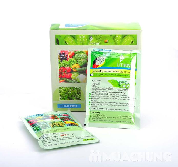 Combo 2 gói phân bón Lithovit cho hoa, cây cảnh - 5