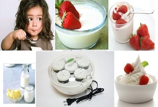 MÁY LÀM SỮA CHUA KANGAROO KG 80, dung tích 01lit, loại 06 cốc để gia đình bạn thoải mái thưởng thức - Chỉ 389.000đ