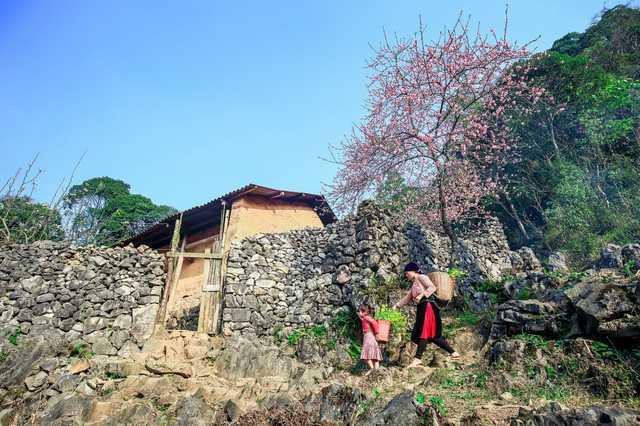 Tour Đông Bắc: Hà Giang - Cao Nguyên Đá - Ngườm Ngao - Hồ Ba Bể 5N4Đ - 11