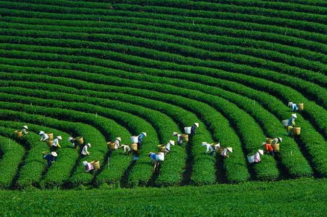 Tour Đông Bắc: Hà Giang - Cao Nguyên Đá - Ngườm Ngao - Hồ Ba Bể 5N4Đ - 3
