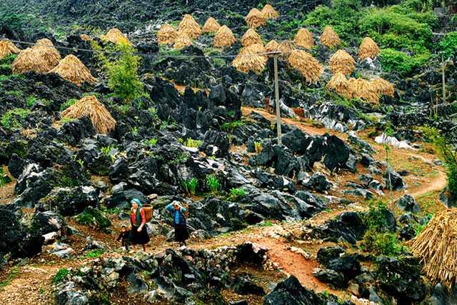 Tour Đông Bắc: Hà Giang - Cao Nguyên Đá - Ngườm Ngao - Hồ Ba Bể 5N4Đ - 8