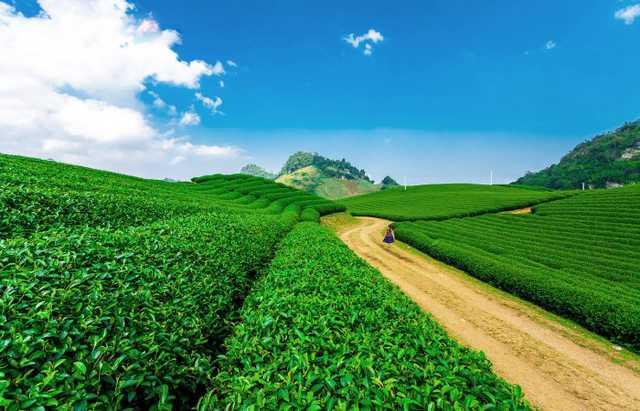 Tour Đông Bắc: Hà Giang - Cao Nguyên Đá - Ngườm Ngao - Hồ Ba Bể 5N4Đ - 4