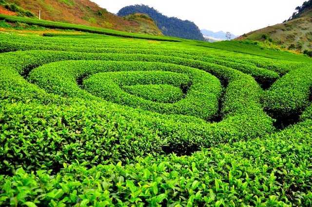 Tour Đông Bắc: Hà Giang - Cao Nguyên Đá - Ngườm Ngao - Hồ Ba Bể 5N4Đ - 1