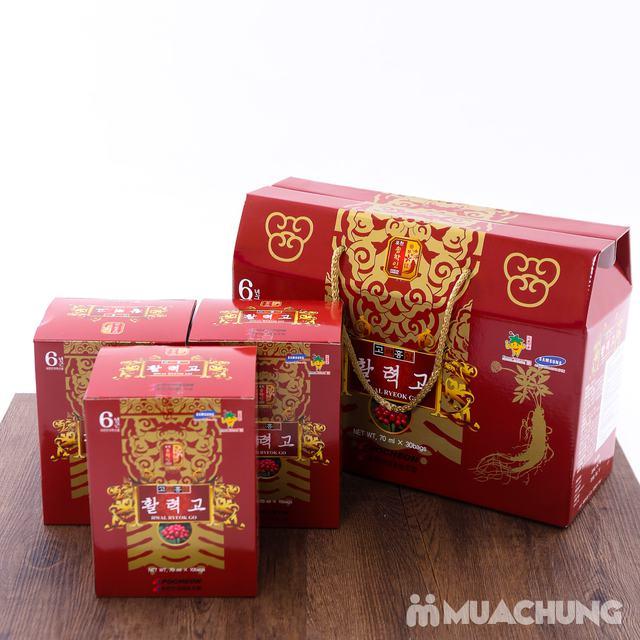 Nước hồng sâm Hwal Ryeok Go Hàn Quốc 30 gói - 6