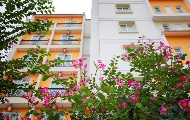 Khách sạn Royal Riverside 4* - Ngay trung tâm Phố cổ Hội An - 31