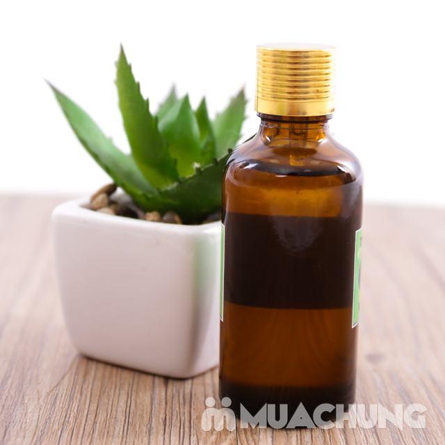 50ml Tinh dầu sả chanh - 100% nguyên chất - 4