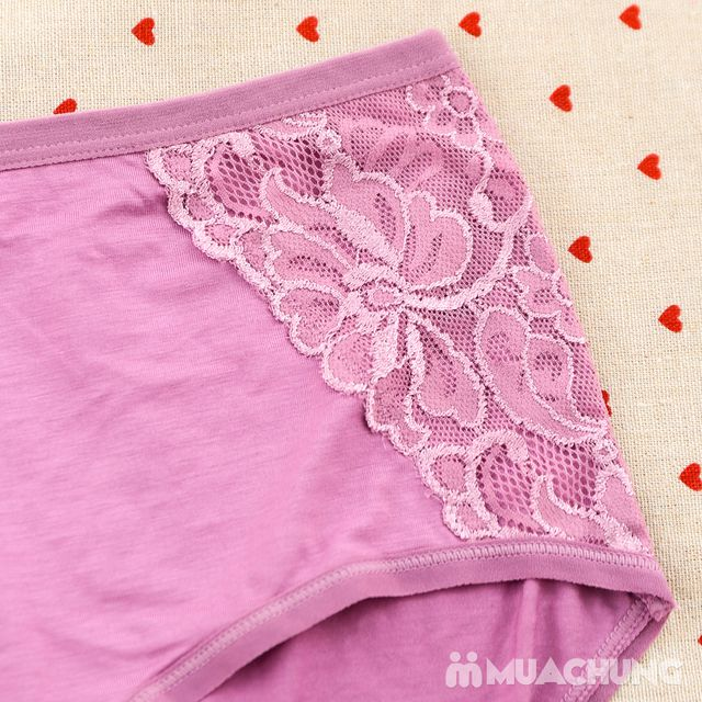 05 quần lót cạp cao chất cotton - hàng Việt Nam - 11