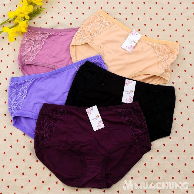 05 quần lót cạp cao chất cotton - hàng Việt Nam - 16