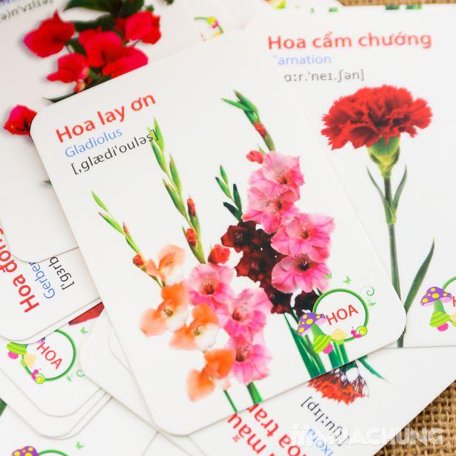 Bộ 416 thẻ học, 16 chủ đề song ngữ Anh - Việt - 1
