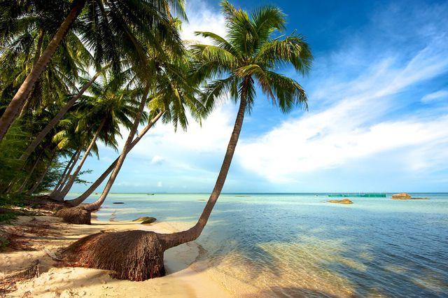 Câu cá -Lặn Bình khí - Khám phá Nam Đảo Phú Quốc 1 Ngày - 1